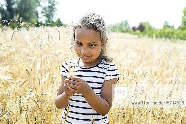 Kleines Mädchen steht im Weizenfeld und schaut auf die Weizenähre