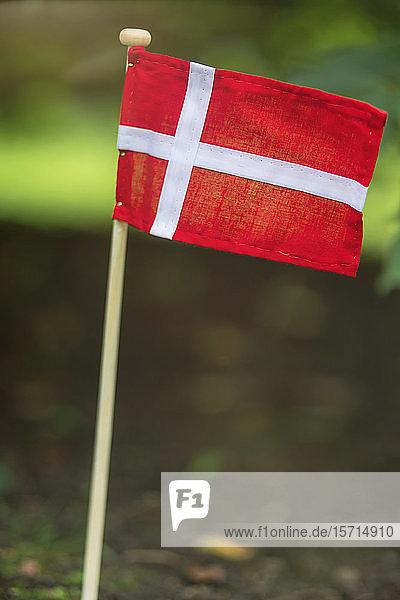 Dänemark  Aarhus  dänische Flagge im Vorgarten