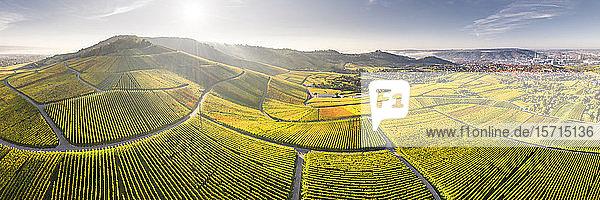 Deutschland  Baden-Württemberg  Stuttgart  Luftbildpanorama von ausgedehnten Weinbergen im Sonnenuntergang im Herbst