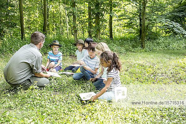 Schulkinder lernen  Tierarten im Wald zu unterscheiden