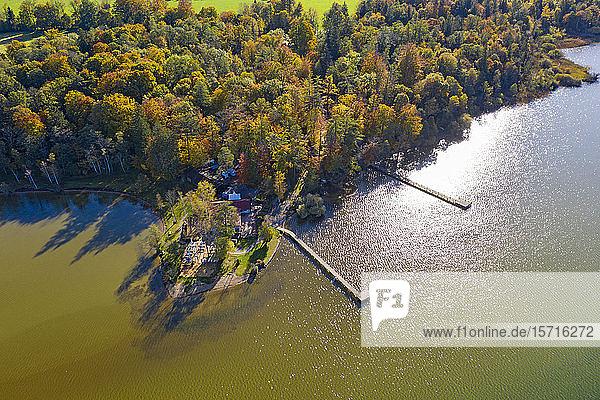 Deutschland  Bayern  Luftaufnahme von Bootsstegen am bewaldeten Ufer des Starnberger Sees im Herbst