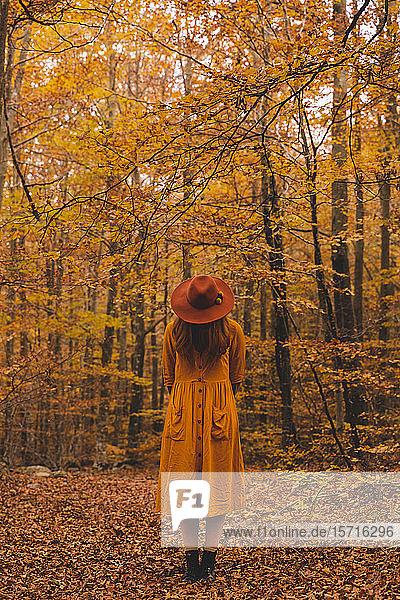Modische rothaarige junge Frau im Herbstwald