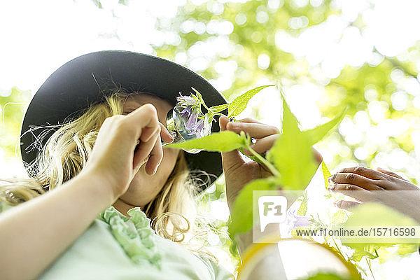 Schulmädchen untersucht Blätter am Baum  mit Vergrößerungsglas