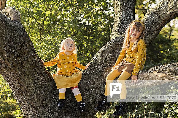Zwei kleine gelb gekleidete Mädchen sitzen auf einem Baumstamm