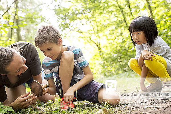 Boy and tcher examining mushroom in nature