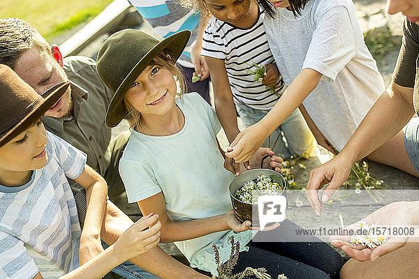 Schulkinder lernen  wie man einen Kamillenaufguss zubereitet