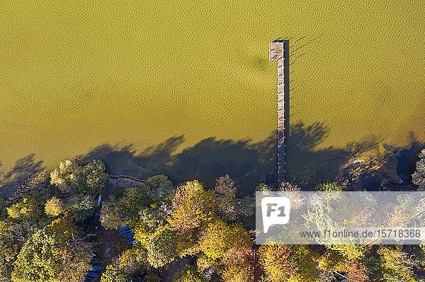 Deutschland  Bayern  Luftaufnahme der Anlegestelle am bewaldeten Ufer des Starnberger Sees im Herbst