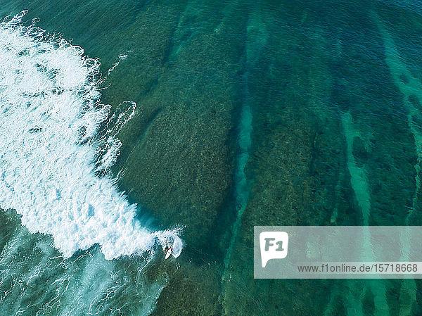 Indonesien  Sumbawa  Luftaufnahme eines Surfers auf See