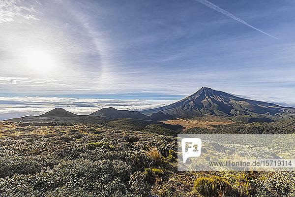 New Zealand  Green flora in front of Mount Taranaki volcano at sunrise