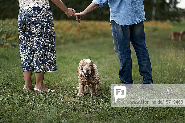 Ehepaar mit ihrem Hund  das Hand in Hand auf einer Wiese steht