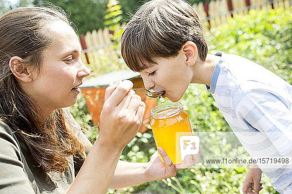 Kleiner Junge schmeckt natürlichen Honig