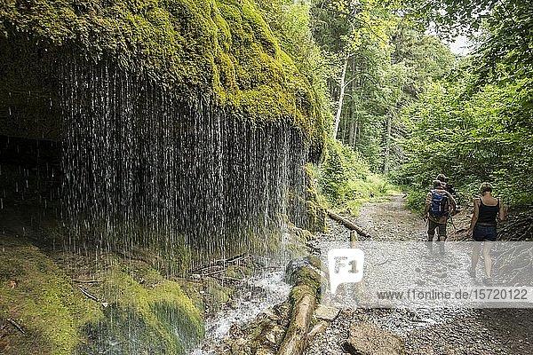 Wanderer  Moosbedeckte Felsen und Wasserfall  Wutachschlucht  Bonndorf  Baden-Württemberg  Schwarzwald  Deutschland  Europa
