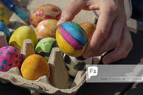 Bemalte Ostereier in einem Eierkarton  Ostereier bemalen  Bayern  Deutschland  Europa