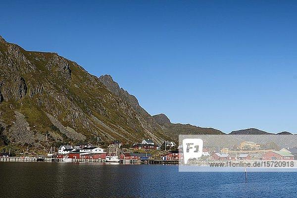 Häuser und Hafen von Ballstad  Insel Vestvagoy  Lofoten  Norwegen  Europa