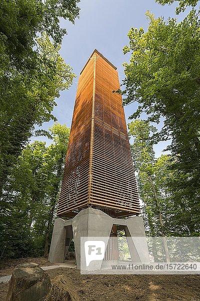 Napoleounturm  Aussichtsturm im Wald  bei Wäldi  Thurgau  Schweiz  Europa