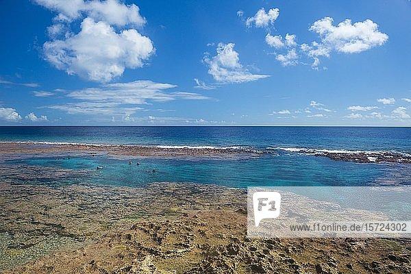 Touristen schwimmen in den Limu Gezeitenbecken  Südpazifik  Niue  Ozeanien