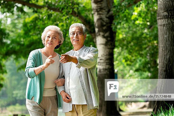 The elderly couple walking in the park