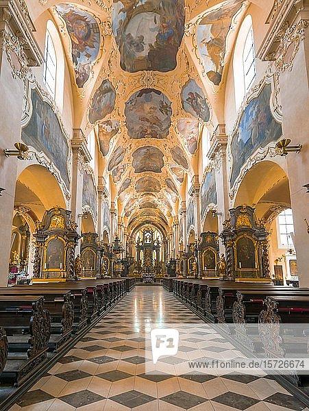 Kirchenschiff  Klosterkirche Mariä Himmelfahrt  Bazilika Nanebevzetí Panny Marie na Strahov?  Innenaufnahme  Kloster Strahov  Hradschin  Prag  Tschechien  Europa