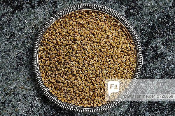 Bockshornklee (Trigonella foenum-graecum)  Samen in einer Schale  Indien  Asien