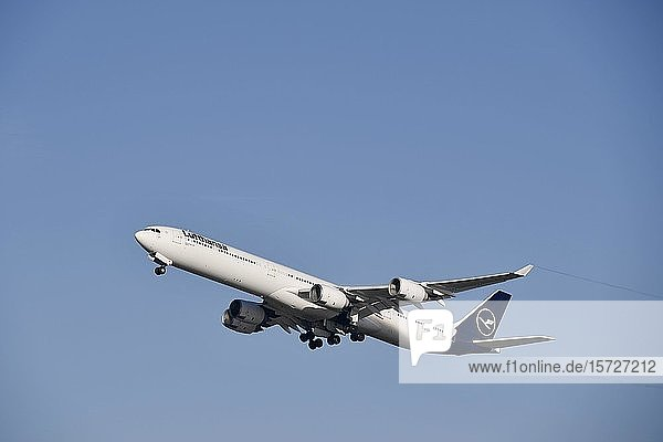 Start  Lufthansa Airbus  A340-600  New Livery  Flughafen München  Oberbayern  Bayern  Deutschland  Europa