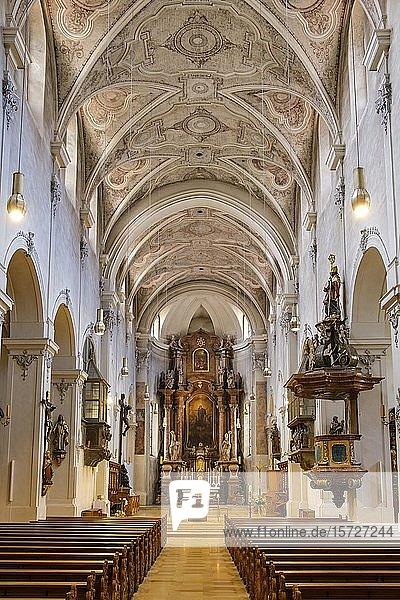 Innenansicht Niedermünsterkirche  Regensburg  Oberpfalz  Bayern  Deutschland  Europa