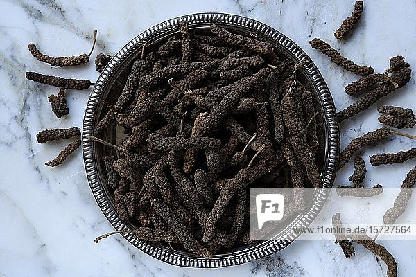 Pippali (Long pepper) in einer Schale  Indien  Asien