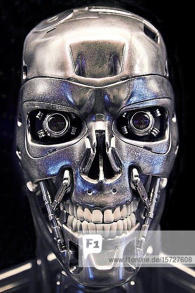 T-800  Nachbildung der fiktiven Roboterfigur aus dem Film Terminator  Deutschland  Europa