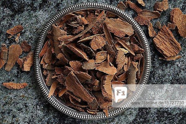 Zimtrinde  Cassiazimt (Cinnamomum cassia) in einer Schale  Indien  Asien