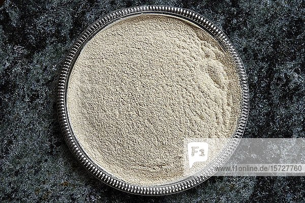 Ashwagandha Pulver (Withania somnifera)  Winterkirsche  Pulver in einer Schale  traditionelle ayurvedische Medizin  Indien  Asien