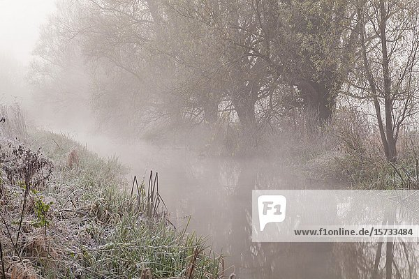 Misty dawn on river Ouse in East Sussex  England.