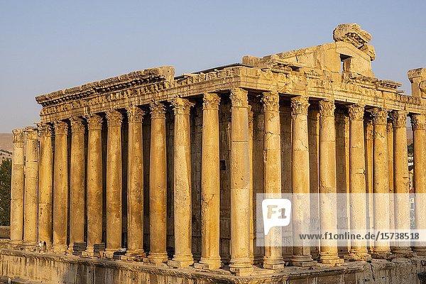 Temple of Bacchus  Baalbeck  Bekaa Valley  Lebanon.