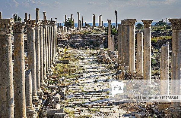 Al-Mina archaeological site  Tyre (Sour)  Lebanon.