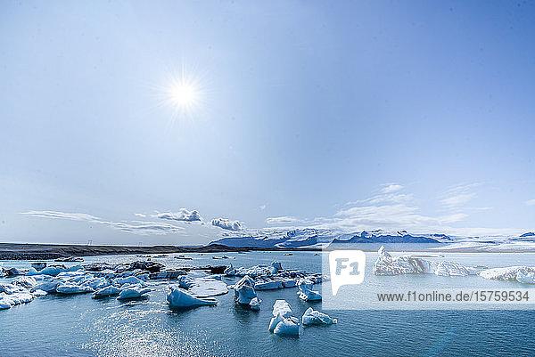 In einer Gletscherlagune schwimmende Eisberge  Island