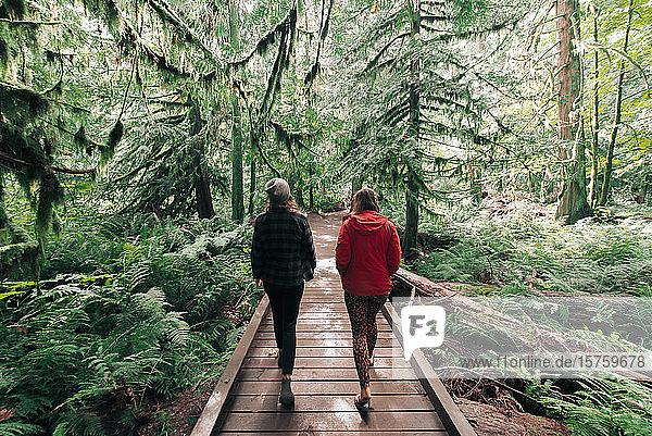 Freunde gehen im Wald spazieren  Cathedral Grove  Britisch-Kolumbien  Kanada