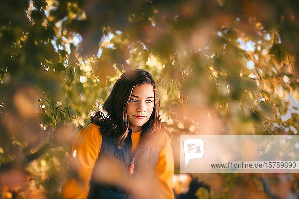 Mädchen  das sich hinter Herbstlaub in den Ästen eines Ahornbaums versteckt.