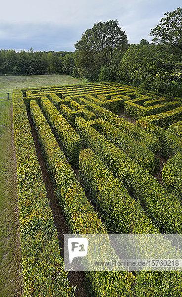 Altes Labyrinth im Morgengrauen  Klein-Zundert  Noord-Brabant  Niederlande
