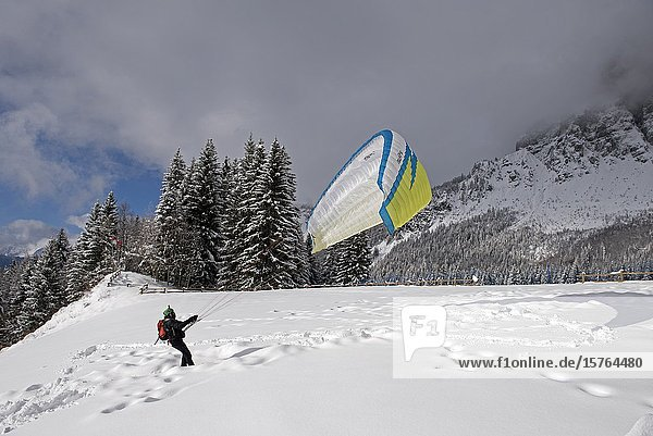 France  Haute-Savoie (74)  Alps  mountains and snow  paraglider.