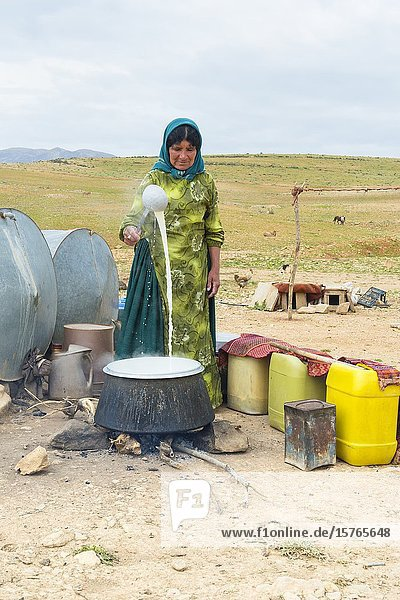 Qashqai woman boiling goat milk  Qashqai nomad camp  Fars Province  Iran.