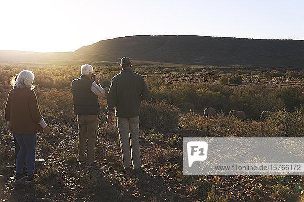 Safari-Gruppe beobachtet Elefanten im sonnigen Wildreservat