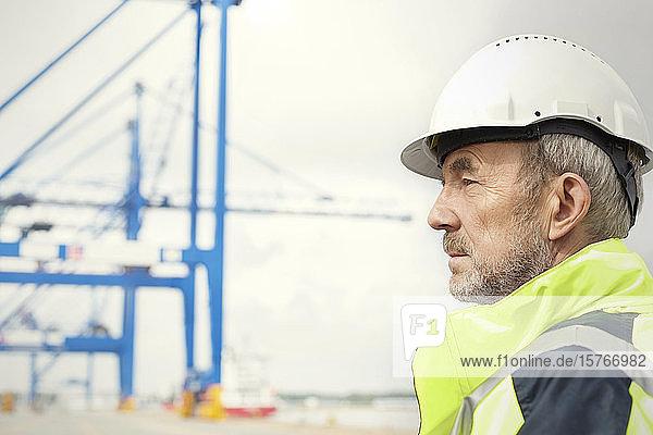 Dock worker looking away at shipyard