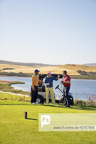 Männliche Golffreunde unterhalten sich auf einem sonnigen Golfplatz am See
