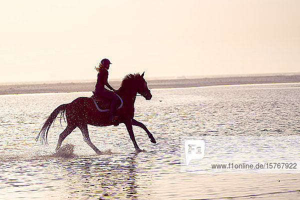 Young woman galloping on horseback in ocean surf