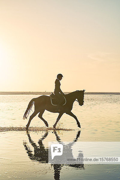 Young woman horseback riding in tranquil sunset surf