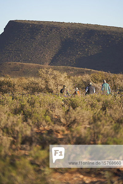 Safari tour group walking along sunny grassland landscape South Africa