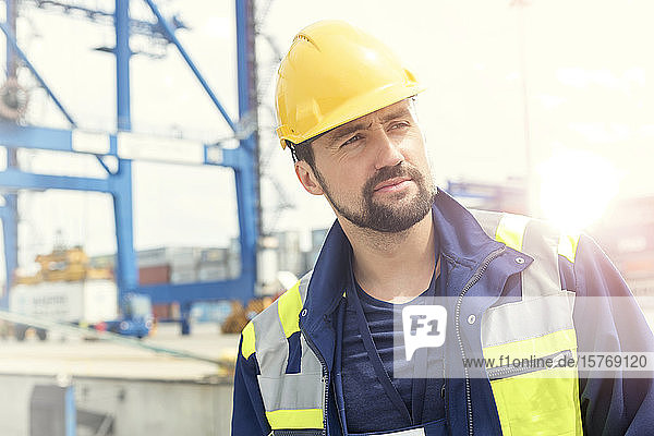 Confident dock worker at shipyard