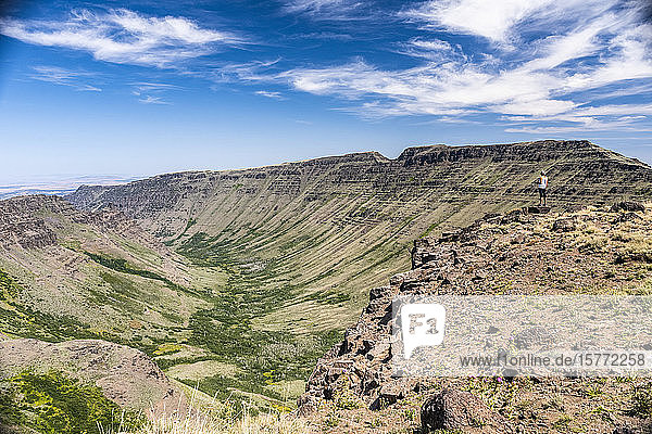 A woman looking out across the Kiger Gorge created by glaciers from a cliffs edge on Steens Mountain  Southeastern Oregon; Frenchglen  Oregon  United States of America