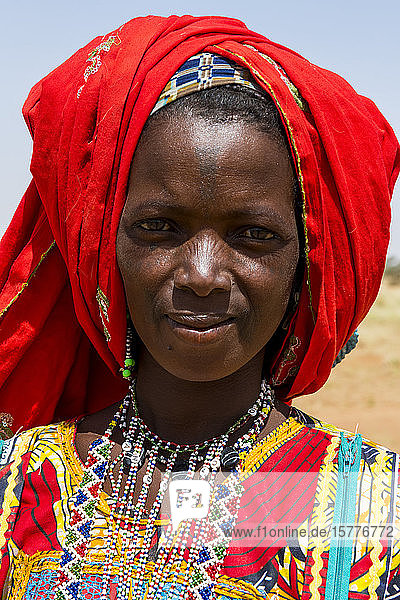 Colourfully dressed woman travels with a caravan of Peul nomads and their animals in the Sahel of Niger  West Africa  Africa