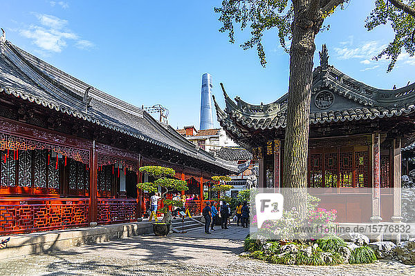 View of traditional and contemporary Chinese architecture in Yu Garden  Shanghai  China  Asia