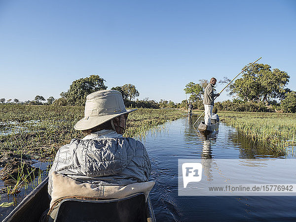 Tourists being poled through the shallow water by Mokoro in the Okavango Delta  Botswana  Africa
