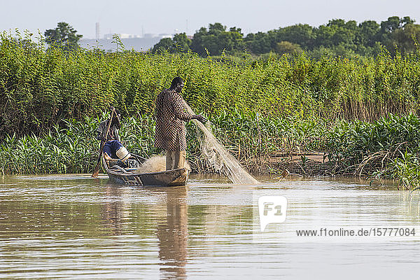 Fishermen in their canoe  Niger river  Niamey  Niger  West Africa  Africa